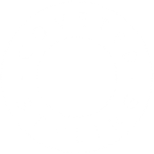 300x300_coveted-styling_logo_11-11